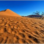 Out of Africa [27] - Namib