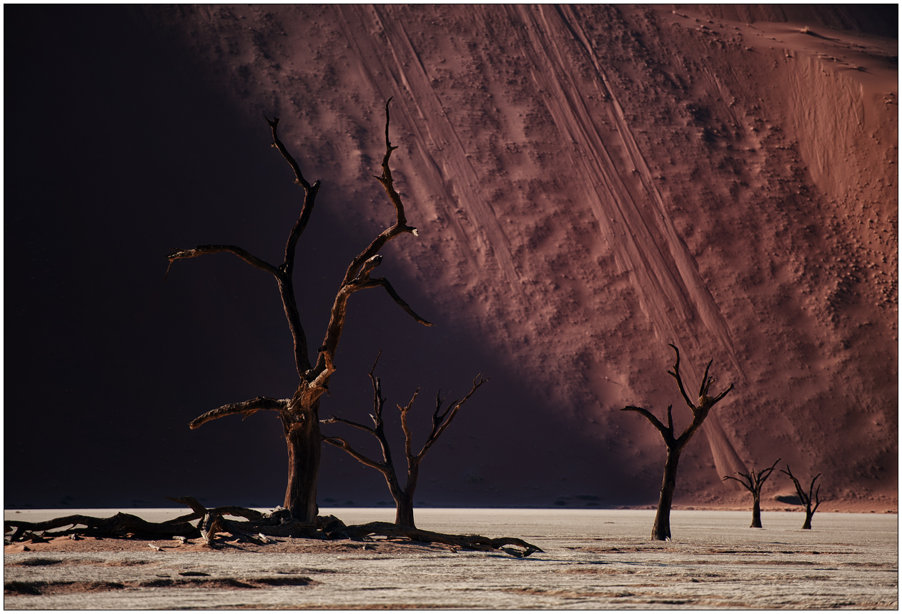 Out of Africa [57] - Dead Vlei