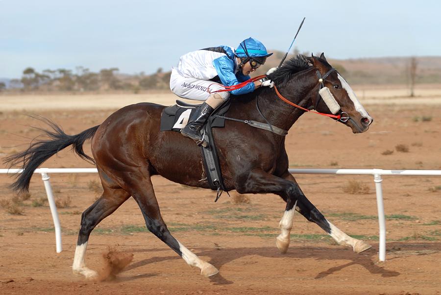 Outbackgalopprennen