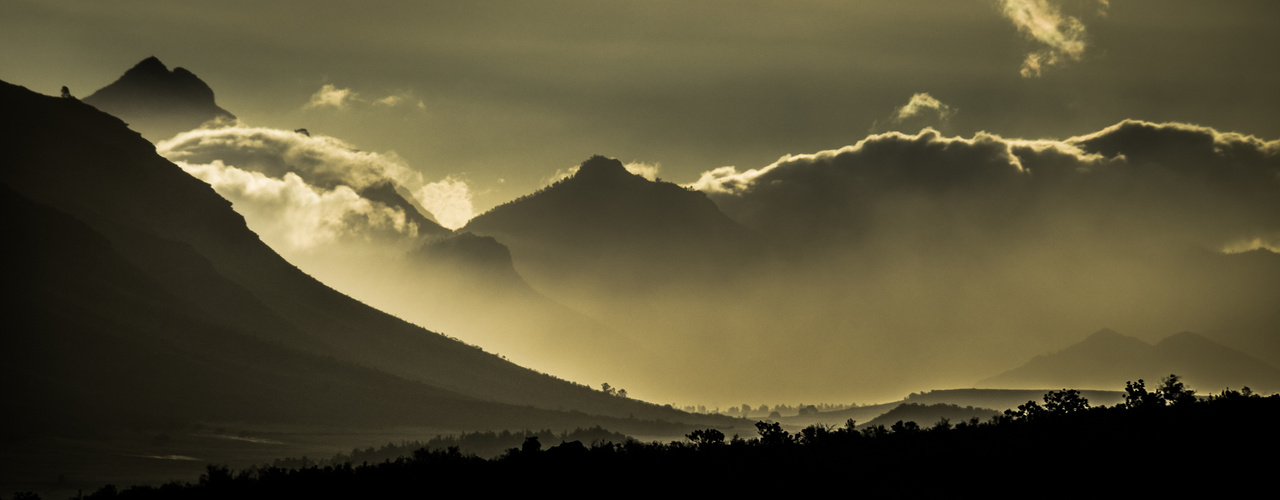 Outeniqua Afternoon