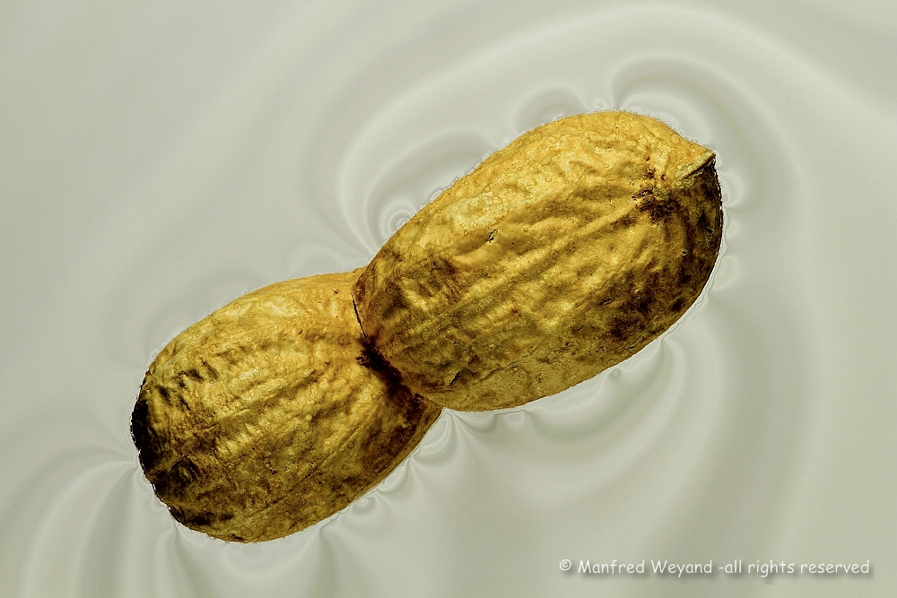 Outer Space Peanut