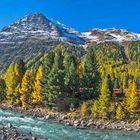 Ova da Bernina im Herbstkleid (Pano)