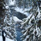Overlook at Moose Falls