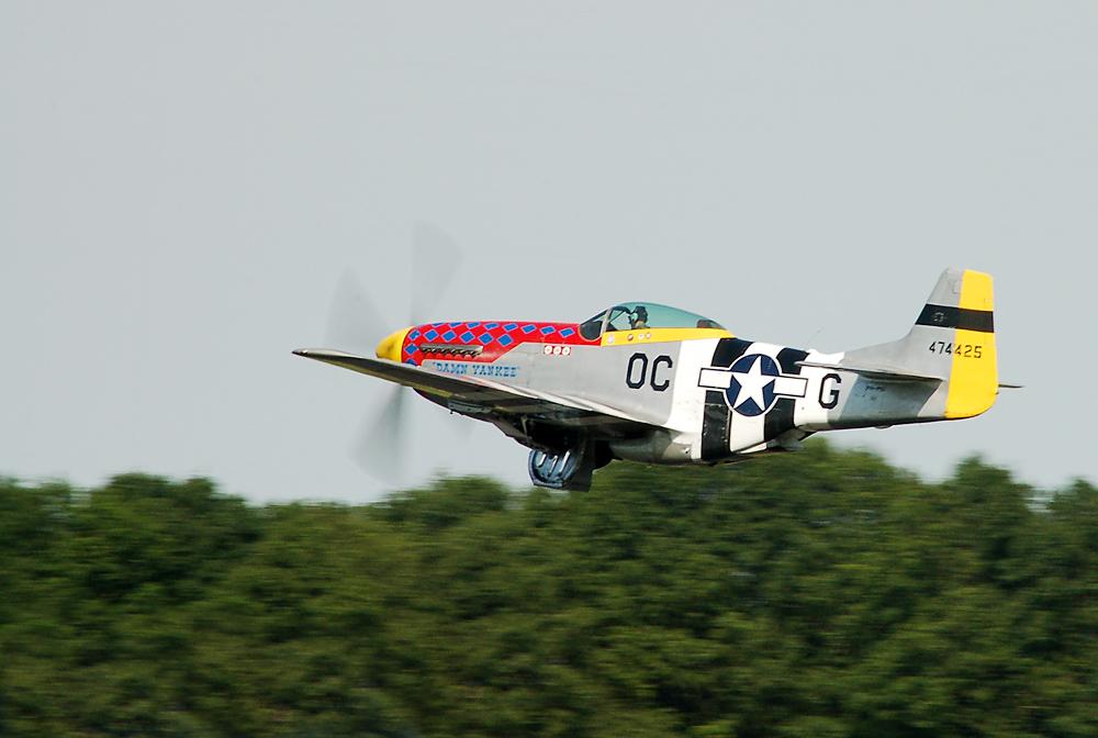 "P-51D Mustang ""Damn Yankee"""