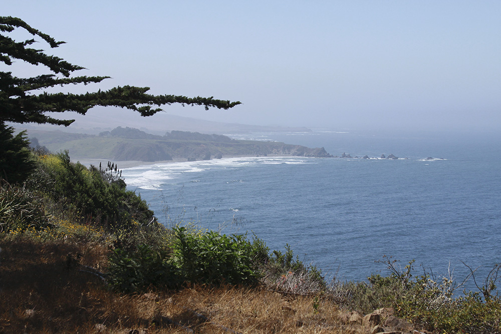 Pacific Ocean from Ragged Point, California