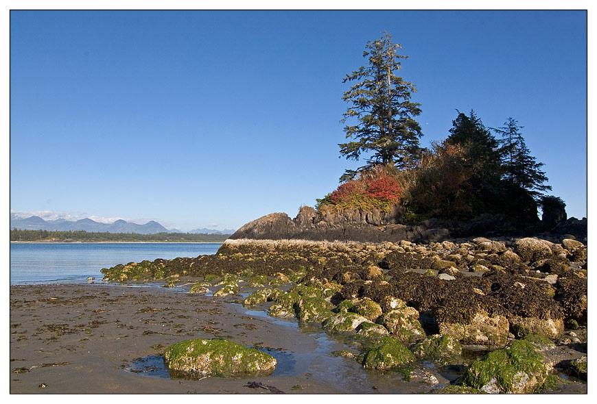 Pacific Rim Nationalpark