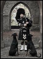 Paddy und seine Hunde