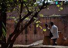 Pärchen im Palace Badi in Marrakesch