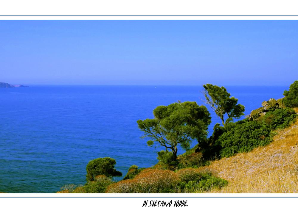 Paesaggio_.