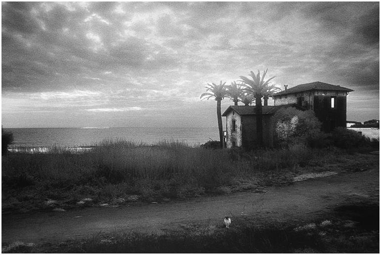 paesaggio 6