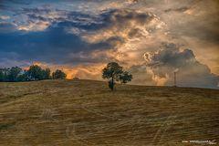 Paesaggio Emiliano