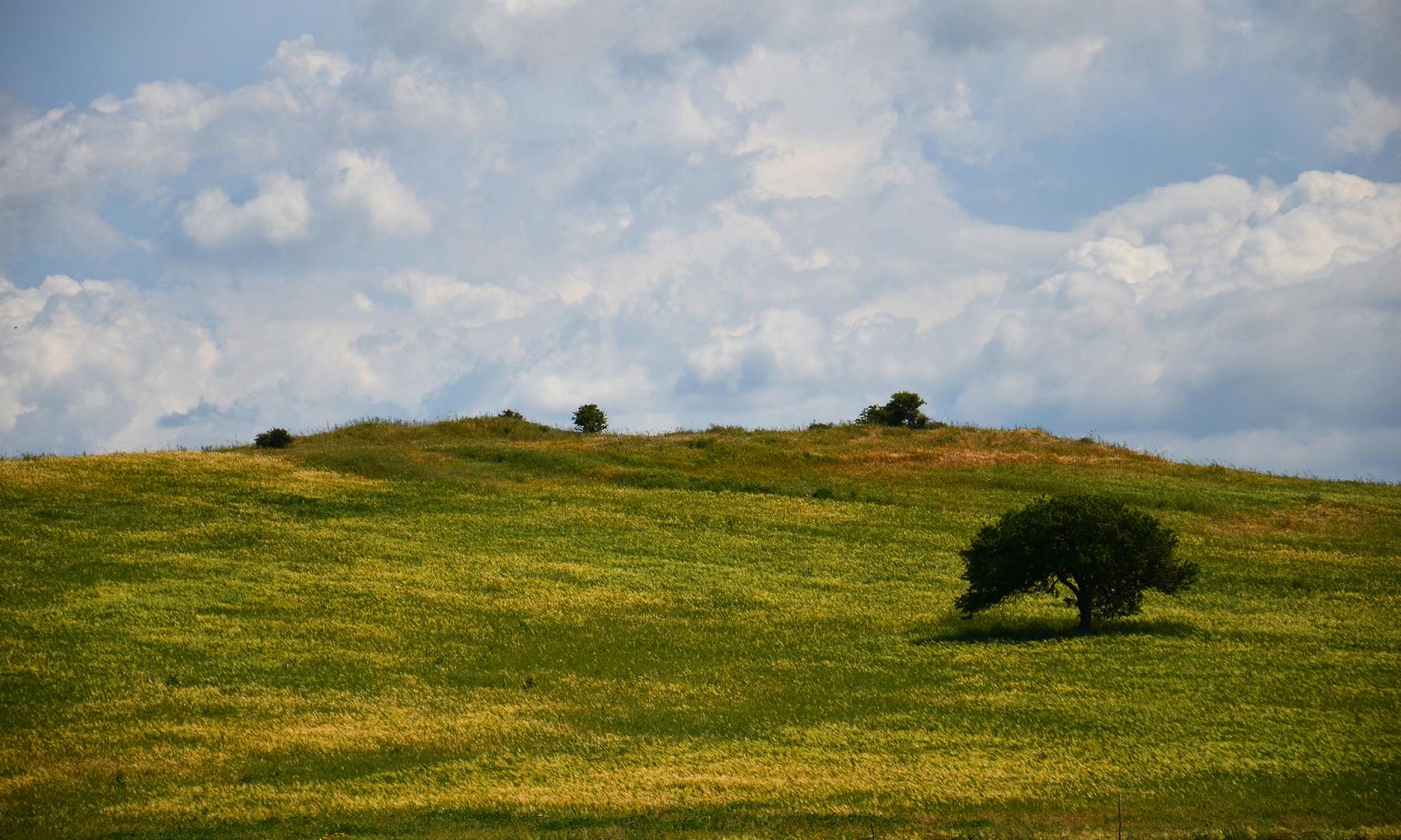paesaggio pittorico - Sardegna