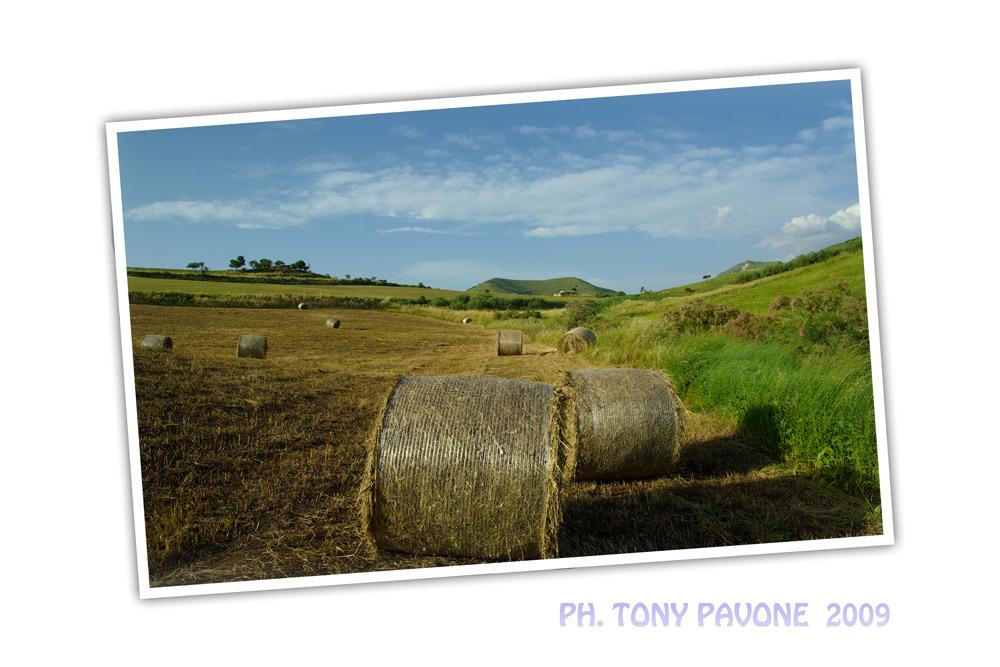 Paesaggio Siciliano ..
