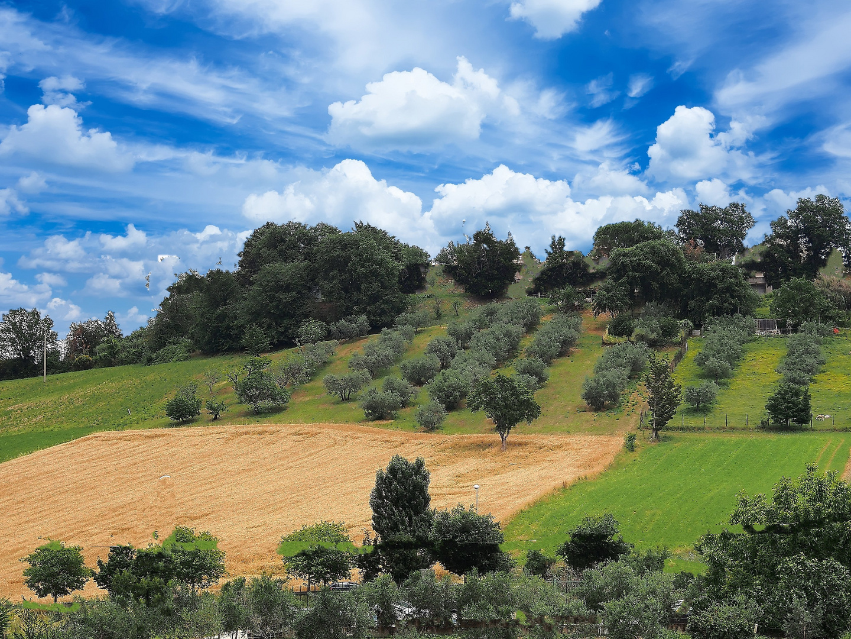 Paesaggio spoletino