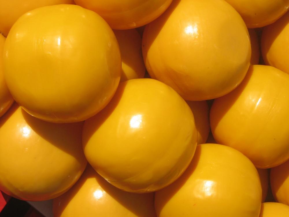 Paesi Bassi - Alkmaar - Mercato del formaggio