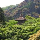 Pagoda roof in Kyoto forest
