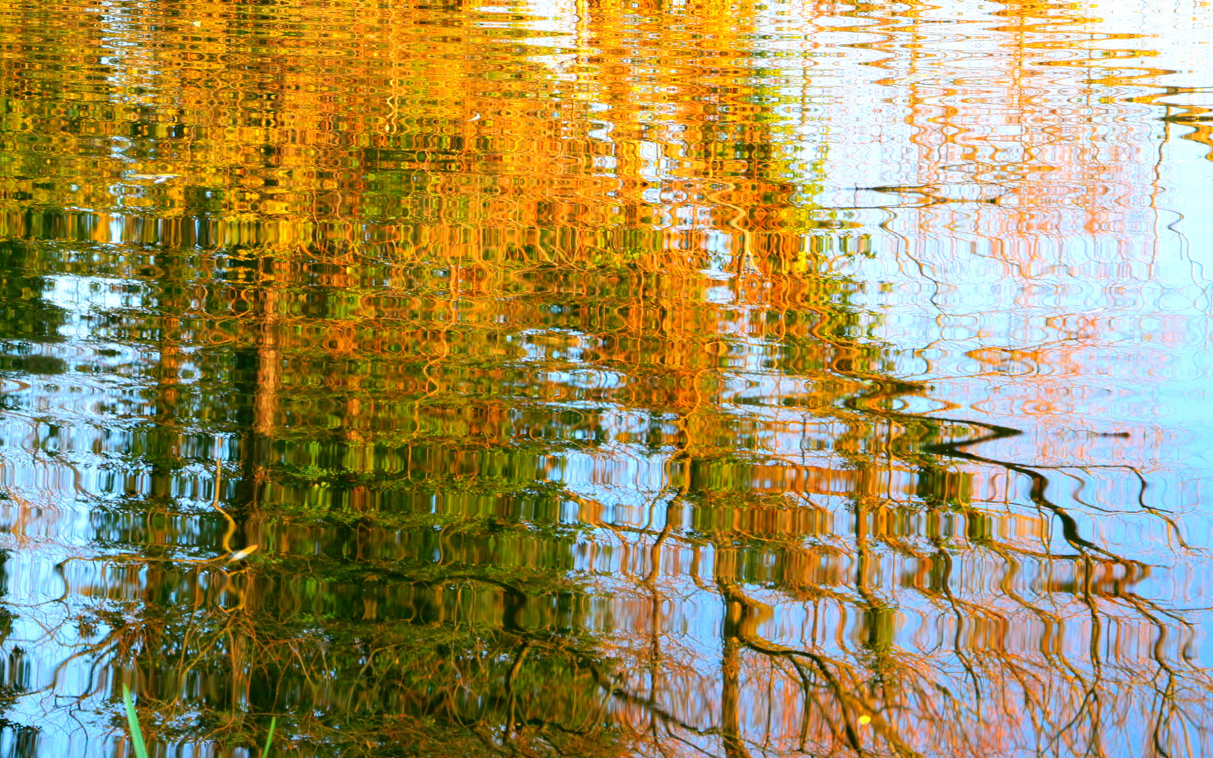 Painted by Reflection