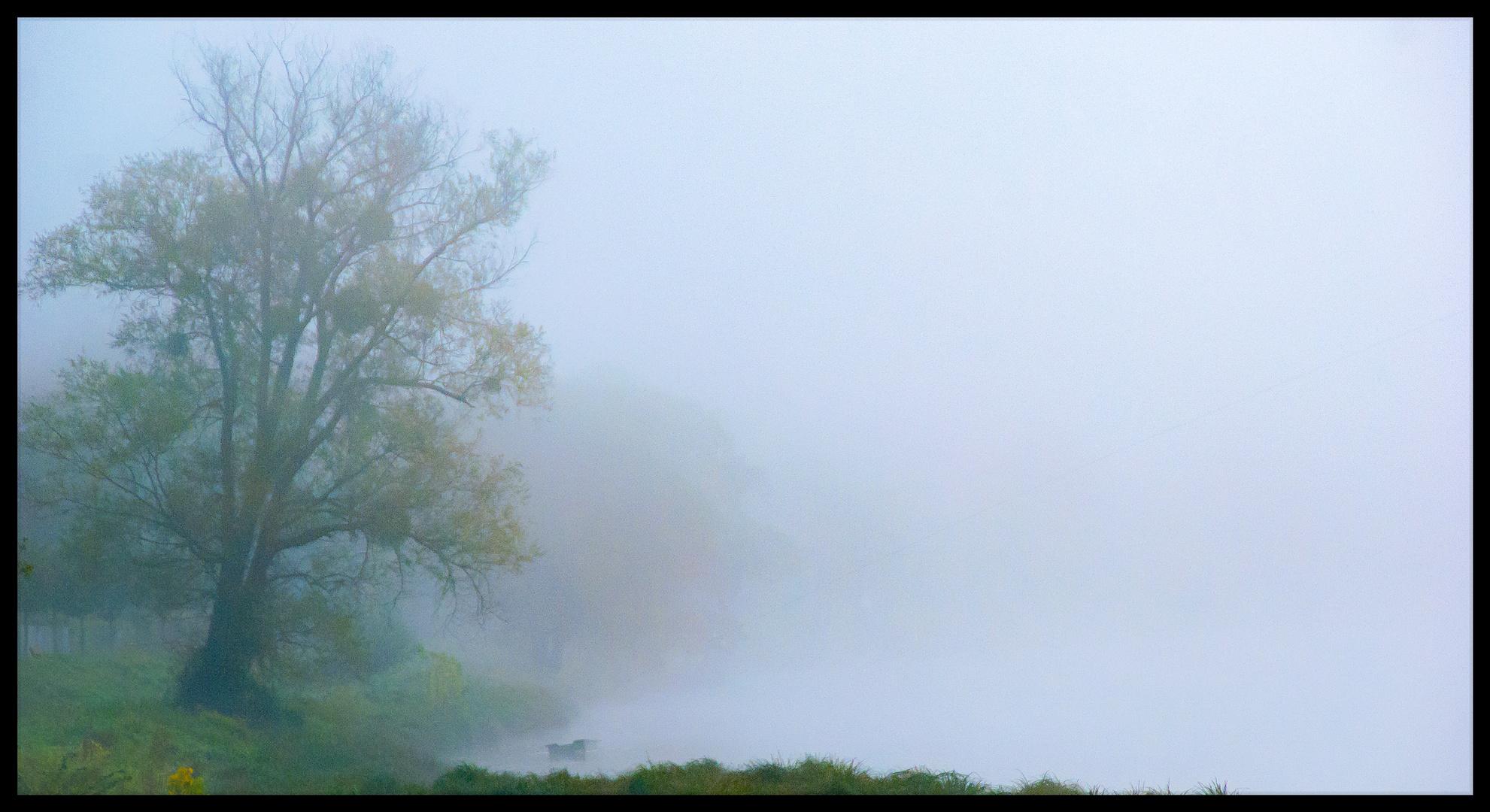 Épais brouillard