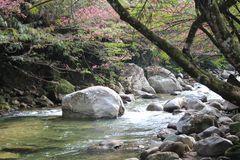 Paisaje en el rio San Rafael