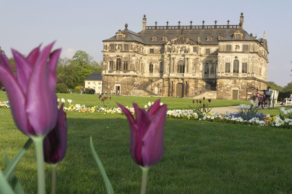 Palais im Großen Garten - im Mai 2013