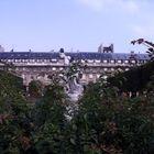 Palais Royal (4)