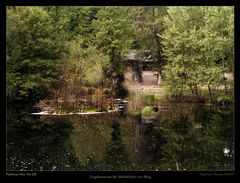Palatina Mia 09 - Naturdenkmal Ungeheuersee