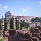 Palatino y Coliseo