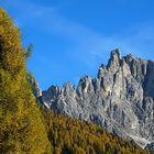 Pale di S. Martino, autunno