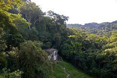 Palenque - Noch ein Blick vom Kreuztempel