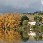 Palette d'automne sur les bords de l'Adour