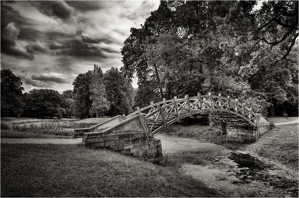 Palladio-Brücke im Luisium (sw)