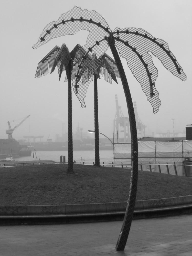 Palm Beach Hamburg
