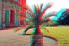 Palm pot [3D]