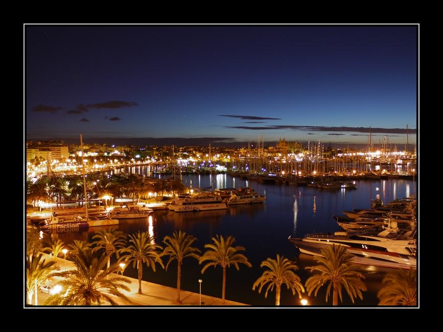 Palma @ Night
