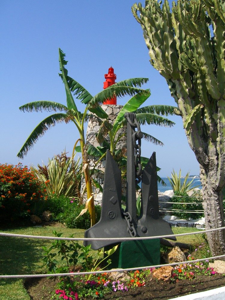 Palme in Marbella