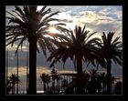 Palmen am Strand von Lloret de Mar
