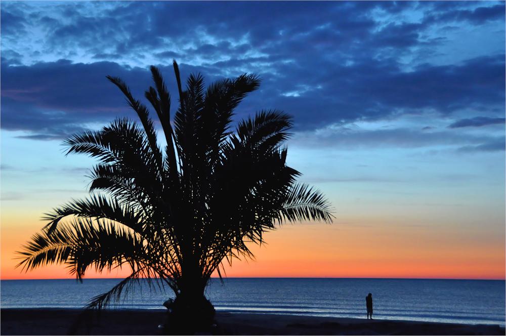 Palmen... Himmel... Meer...
