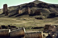 Palmyra.        ..120_4386