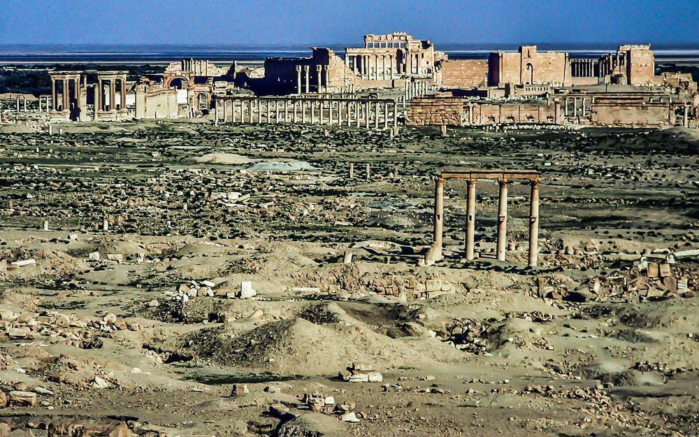 Palmyra.      ...120_4407