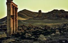 Palmyra.          ..120_4429