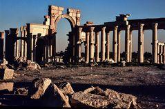 Palmyra.        ..120_4431