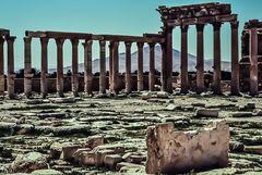 Palmyra, Syrien.   .120_4376