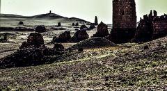 Palmyra, Syrien. ..120_4398