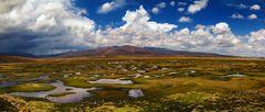 Pampa Cañahuas - Hochmoorlandschaft in Peru