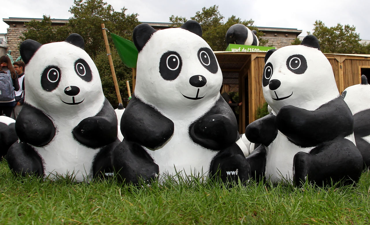 Pandas goes to Germany
