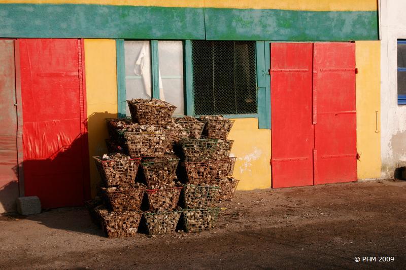 Paniers d'huitres sur Oléron