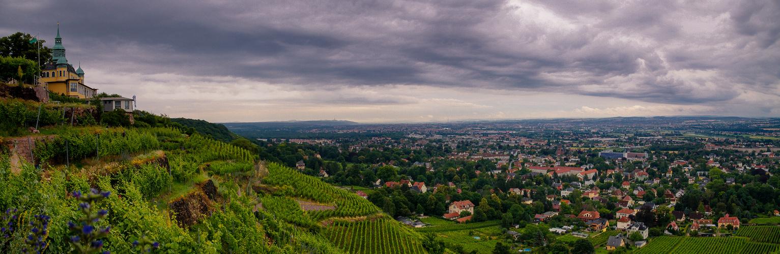 panorama mit Blick ins Elbtal