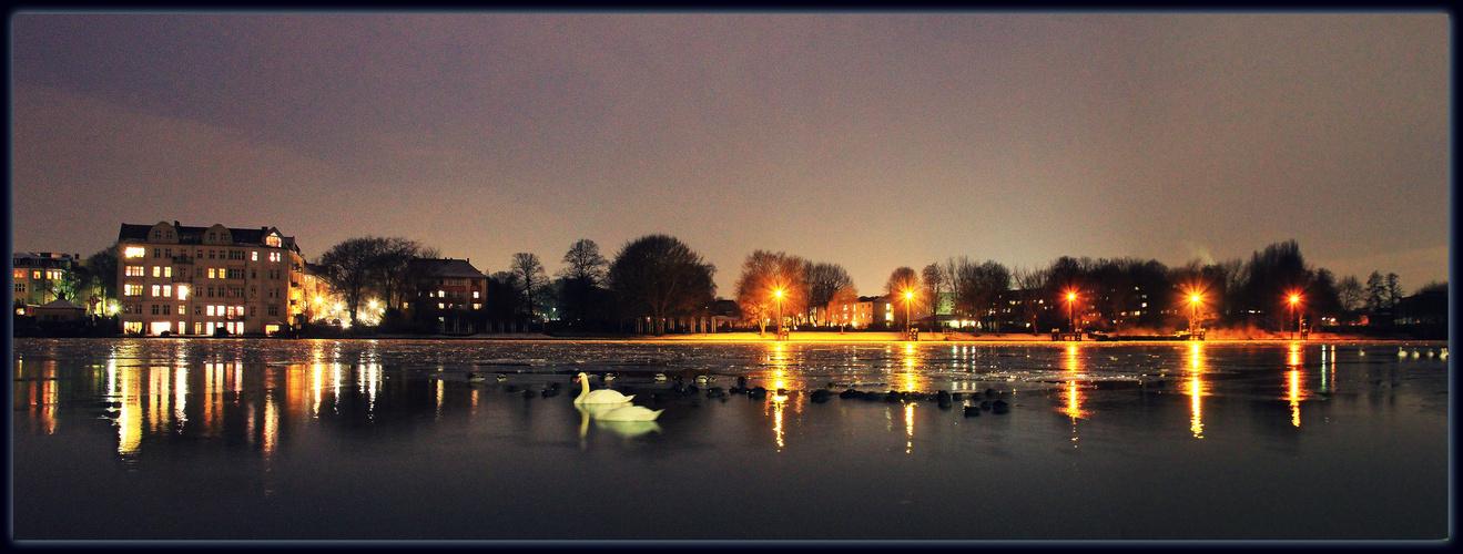 Panoramabild am späten Abend, mit Blick auf Spindlersfeld Berlin und den Menzelpark