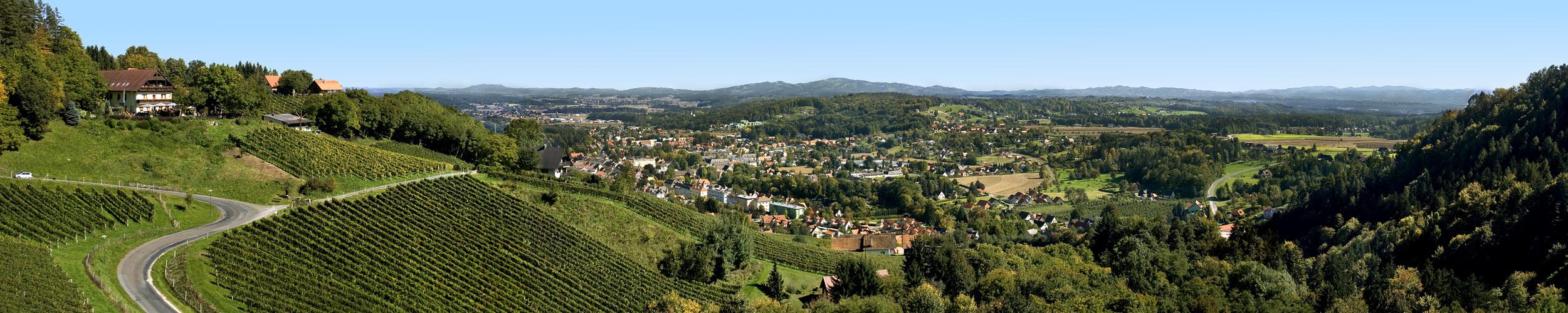 Panoramablick auf Deutschlandsberg!