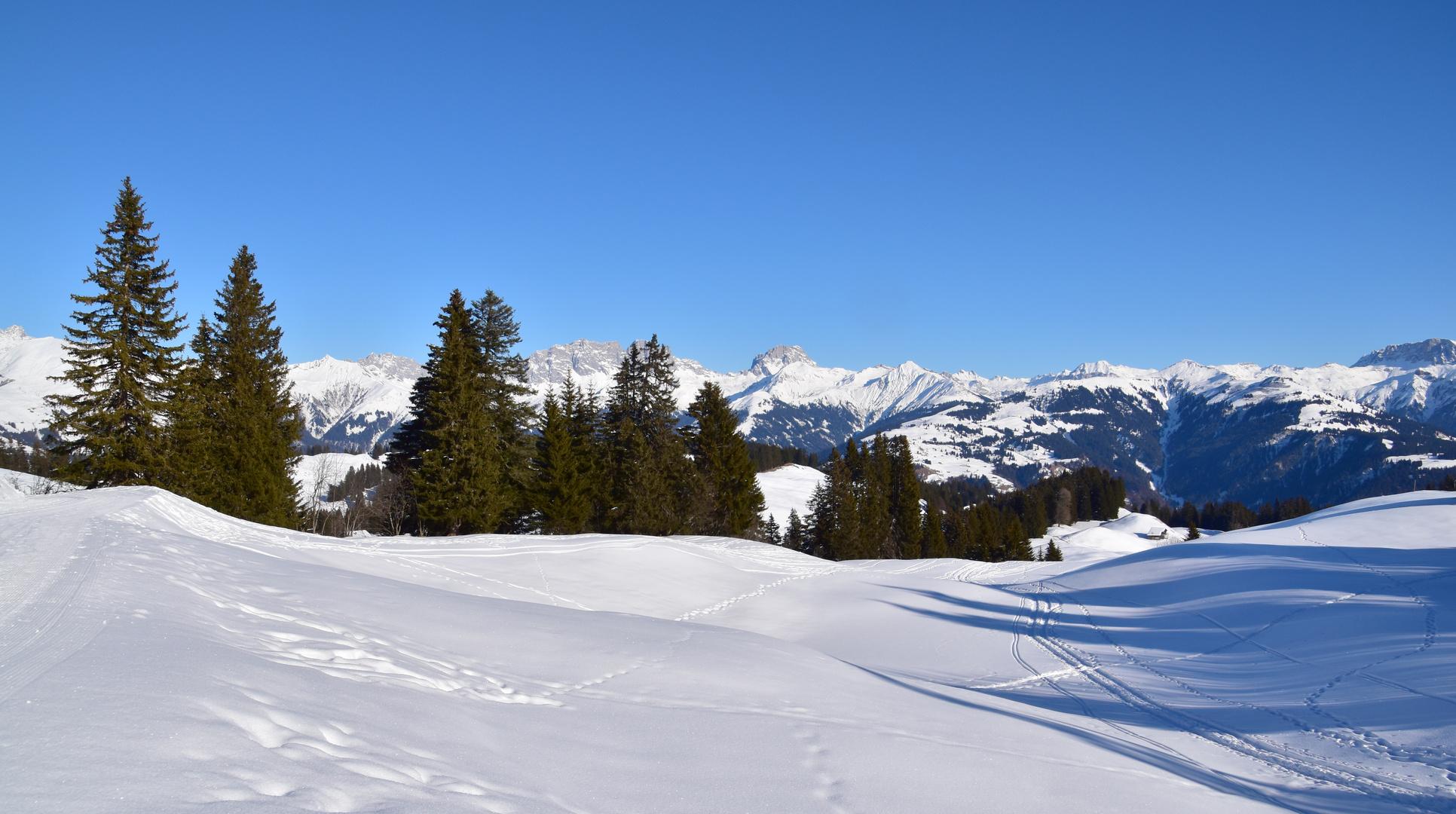 Panoramarundweg Grüsch Danusa